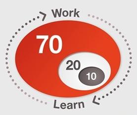 Embedded leren (702010) in het werk door nieuw ontwerp werkproces